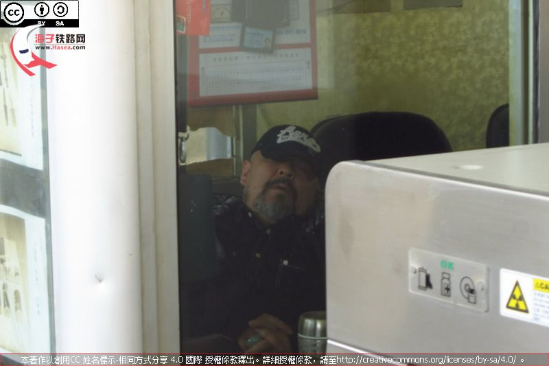 Sleepy in Zhangjiakou.JPG